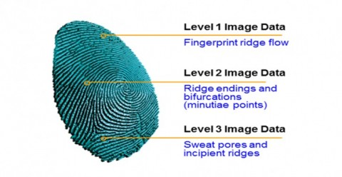 Qualcomm Fingerprint